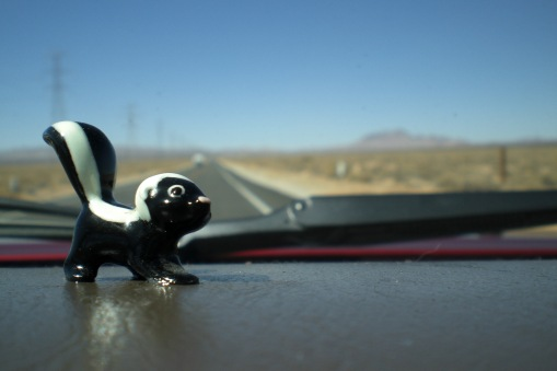 Charlie L. Skunkerton, our dashboard companion.