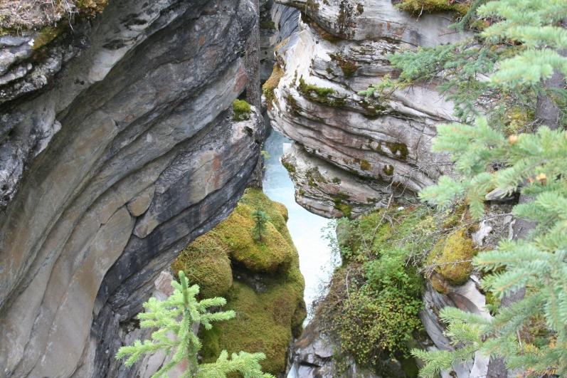 A view of the river deep below the canyon at Athabasca Falls