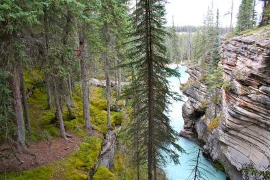 Stunning view at Athabasca Falls