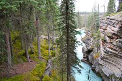 Stunning view at Athabasca Falls