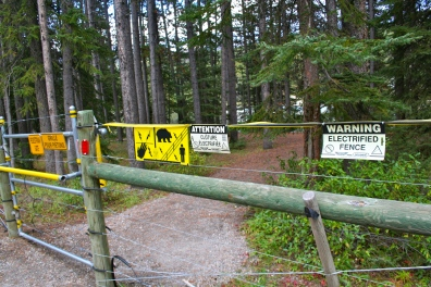 The electric fence that surrounded our campground in Banff