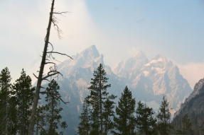 The only photo I could get of the Grand Tetons that wasn't smokey. Sad face.