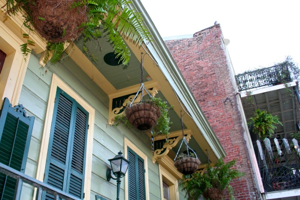Almost every building in the French Quarter has hanging plants and old-style lights. Many of the lights are powered by natural gas, so they flicker at night which is quite beautiful.