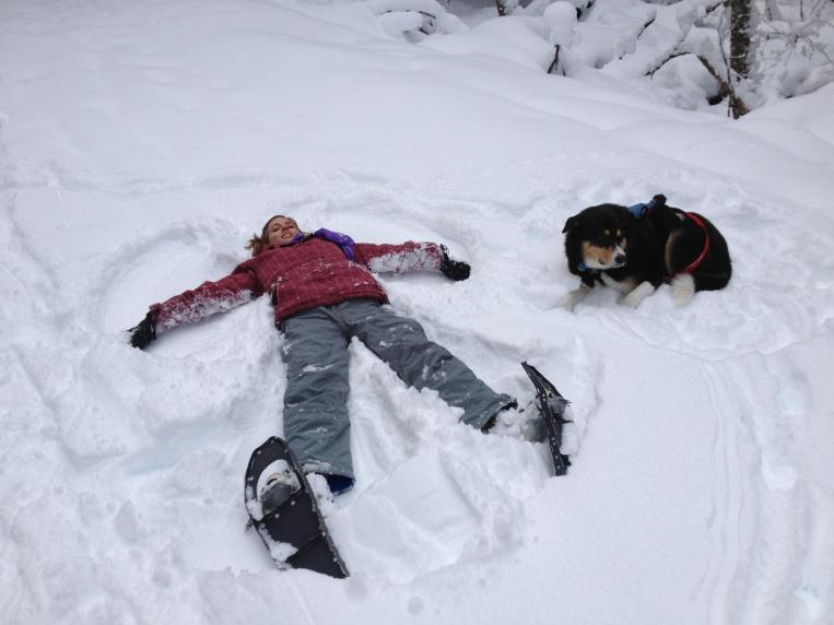 I made a snow angel. Zephyr was unimpressed.
