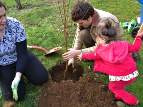 Grace helped us plant the trees, until she saw an earthworm and was convinced it was a scary snake!