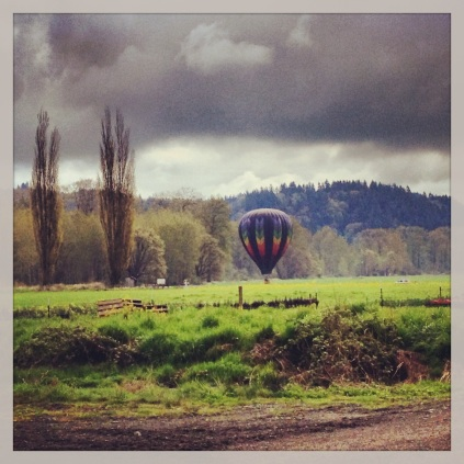 There is a hot air balloon and skydiving airport nearby, and this visitor surprised us the other morning. Not a bad way to start the day!