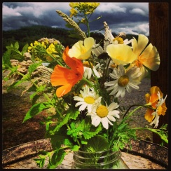 Every week I make a new wildflower bouquet to greet our members when they pick up. I really enjoy it!