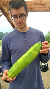 Kyle examines the world's biggest cucumber