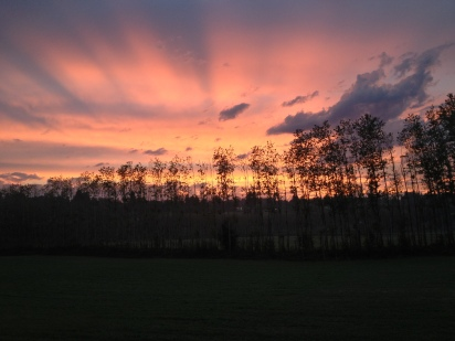 Another fabulous sunset on the farm