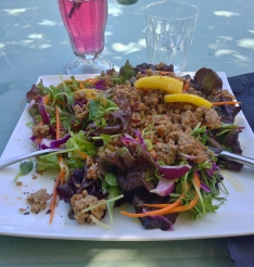 This minted pork mango salad was at an herb farm out in the middle of nowhere near Walpole. It was the best meal I had in Western Australia!