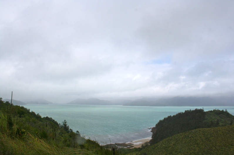 One of the foggy views we found during our hike on South Molle Island