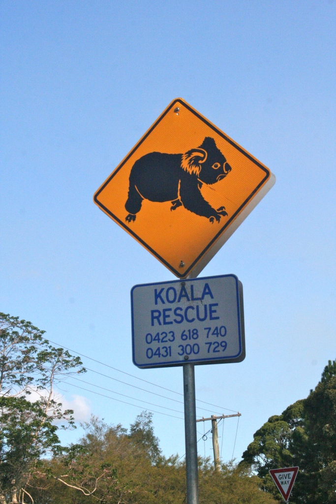 Probably the best street sign I've ever seen