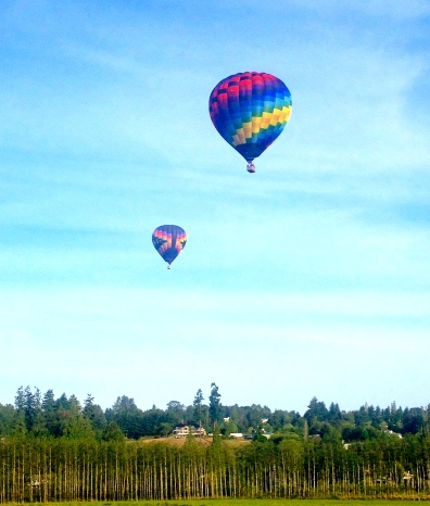 You've seen them before, but I'm still always excited by the hot air balloons. This time of year our farm is part of their main highway. Such an amazing sight!