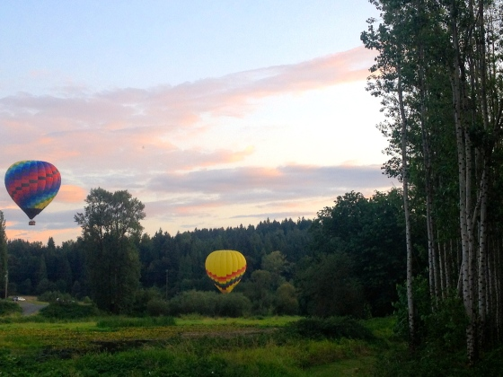 More hot air balloon magic!
