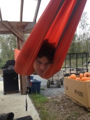 Andrew emerges from his cocoon...