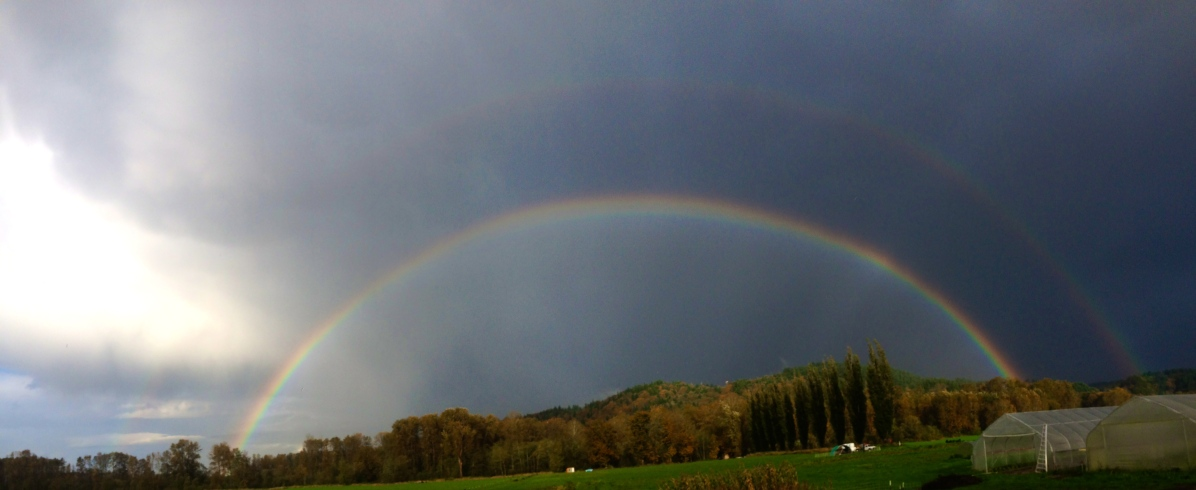So many rainbows make an appearance on the farm!