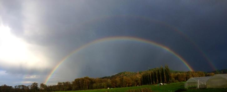 So many rainbows make an appearance on the farm!