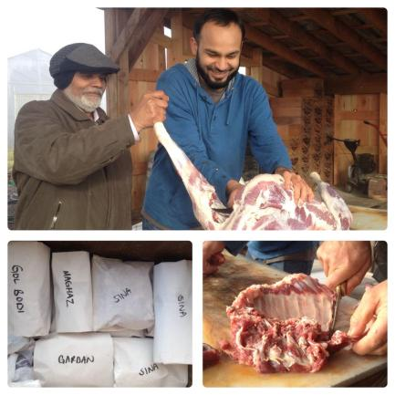 We had a Halal goat slaughter at the farm