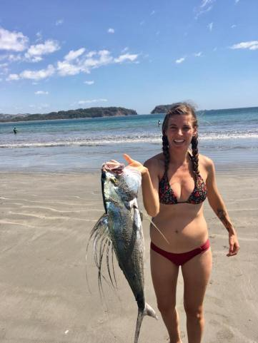 "I ""helped"" a fisherman catch this rooster fish! Well he called me his good luck charm anyway."